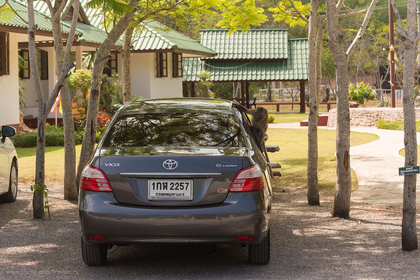Фотография 12. Тихий грабеж. Отчет о самостоятельном путешествии по Таиланду за рулем машины, взятой напрокат.