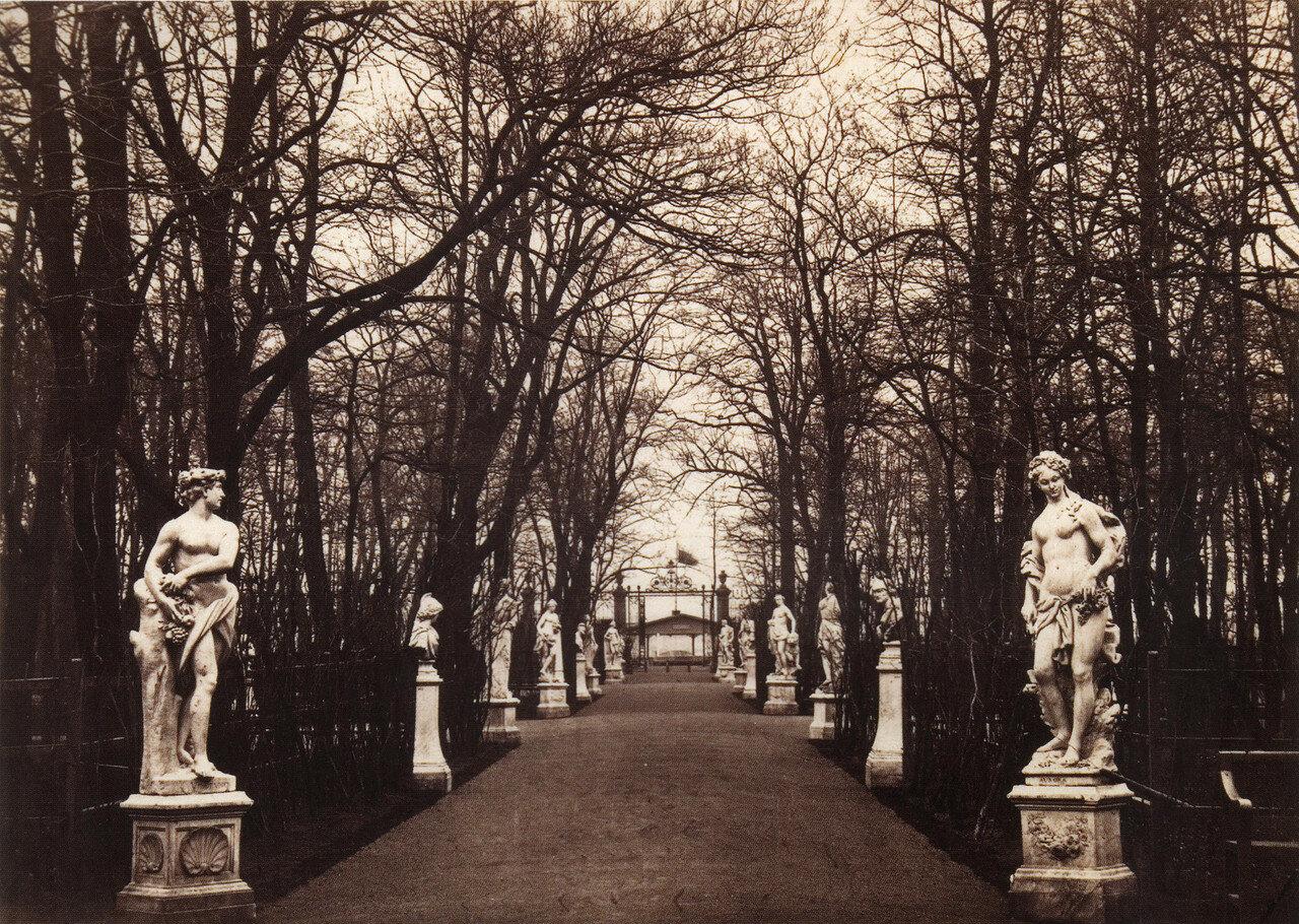 Большая аллея в Летнем саду, 1860-е
