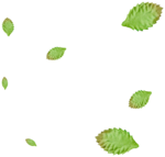 TMartin-BreakYourRules-leaf_scatter.png