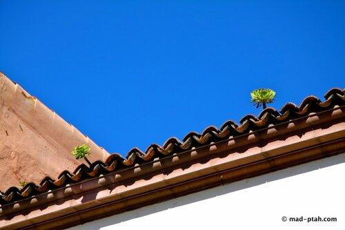 крыша, ла лагуна, тенерифе