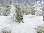 R11 - Winter Time - Back 021.jpg