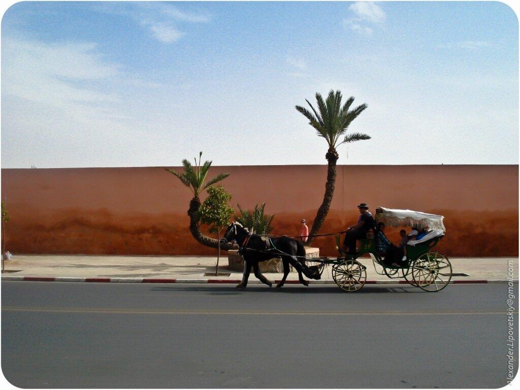 Марокко / Morocco 0_58b70_e87174a_XXL