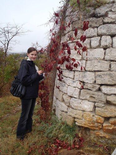 плетни дикого винограда заплели древние стены
