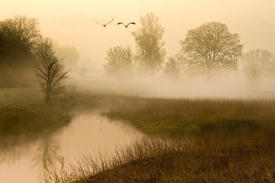 утренний пейзаж