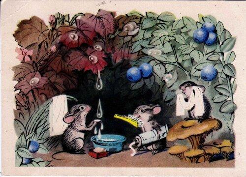 Рисует Сюзанна Бялковская