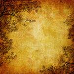 Красивые винтажные текстуры с кленовыми листьями, цветами и ветками...