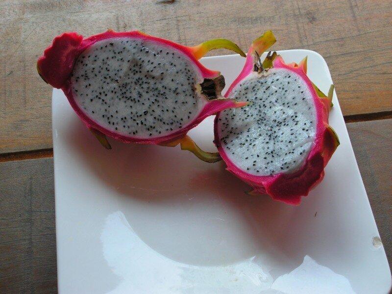 драгон фрукт фото