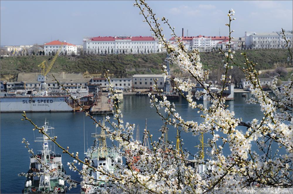 Севастополь весной