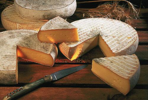 Go2life.net • Несколько интересных фактов о сыре. В фотографиях