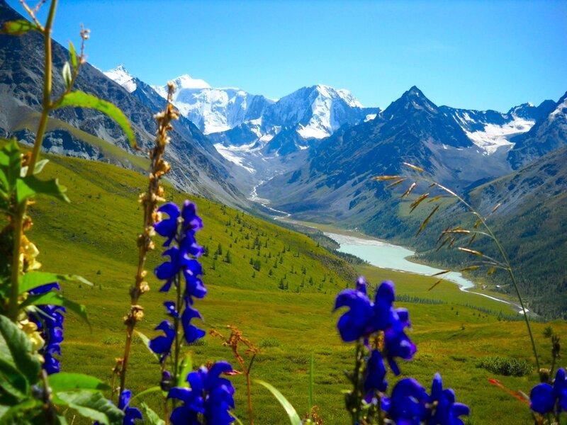 В горах Алтая. К подножию Белухи