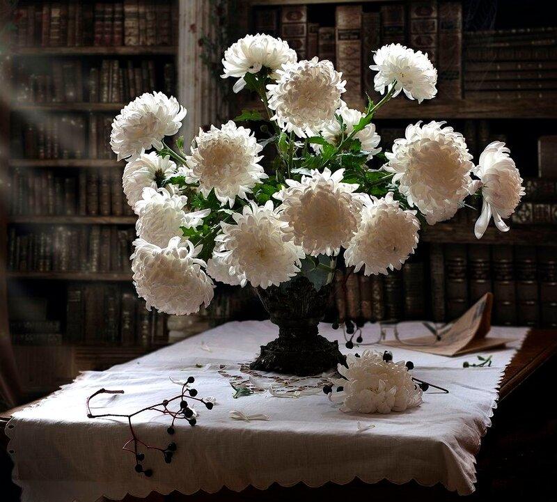 фотографии хризантем в вазе на окне особняк