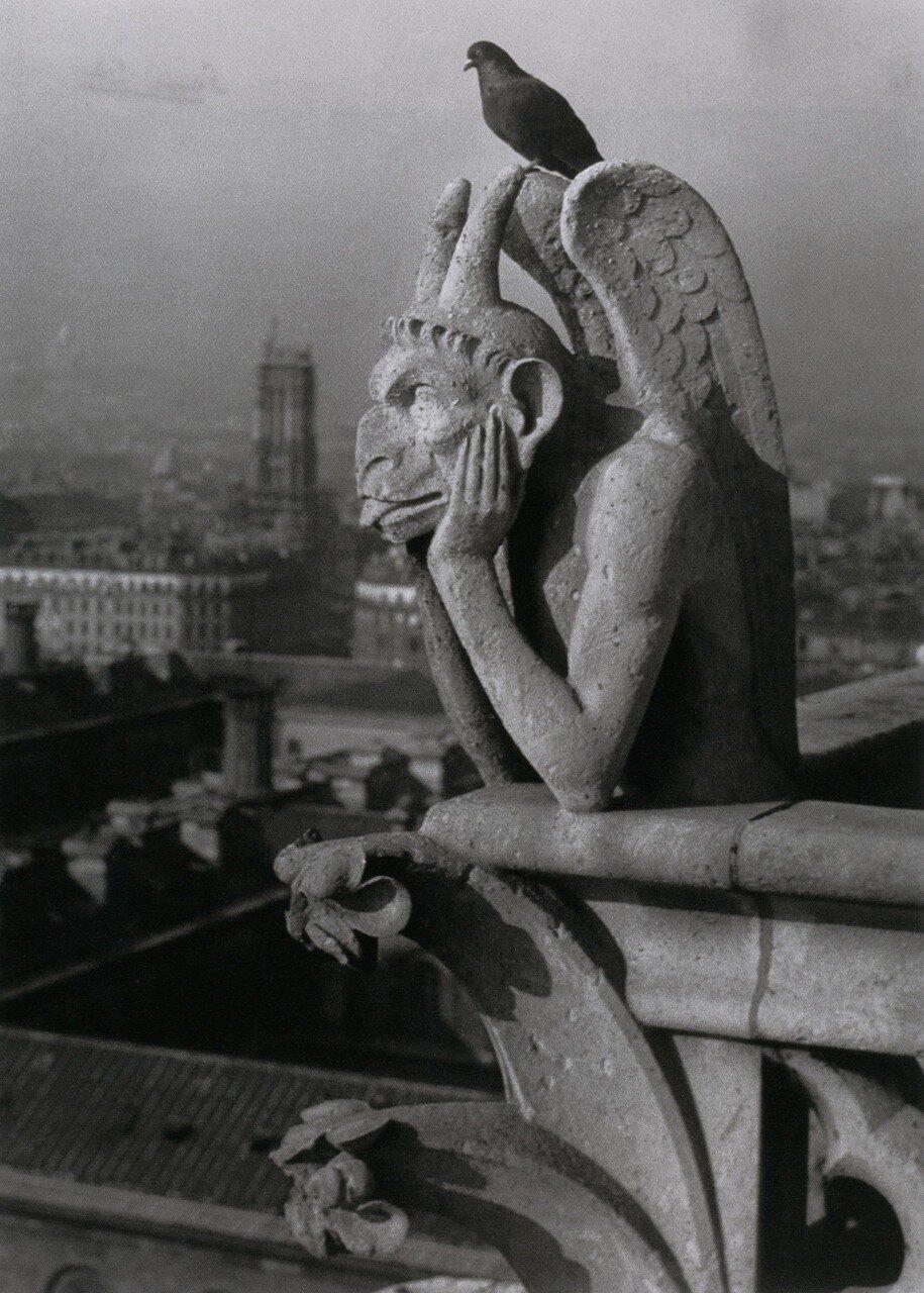 1936. Дьявол и голубь