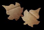 осенние записки