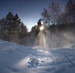 Морозное утро ...
