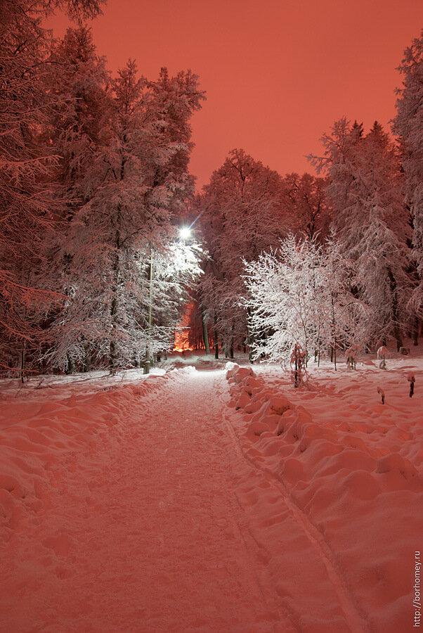 парк имени Зернова Саров