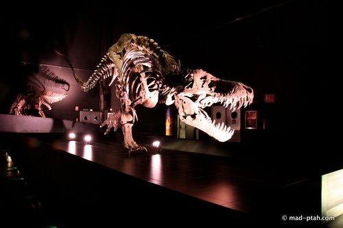 t-rex, динозавры