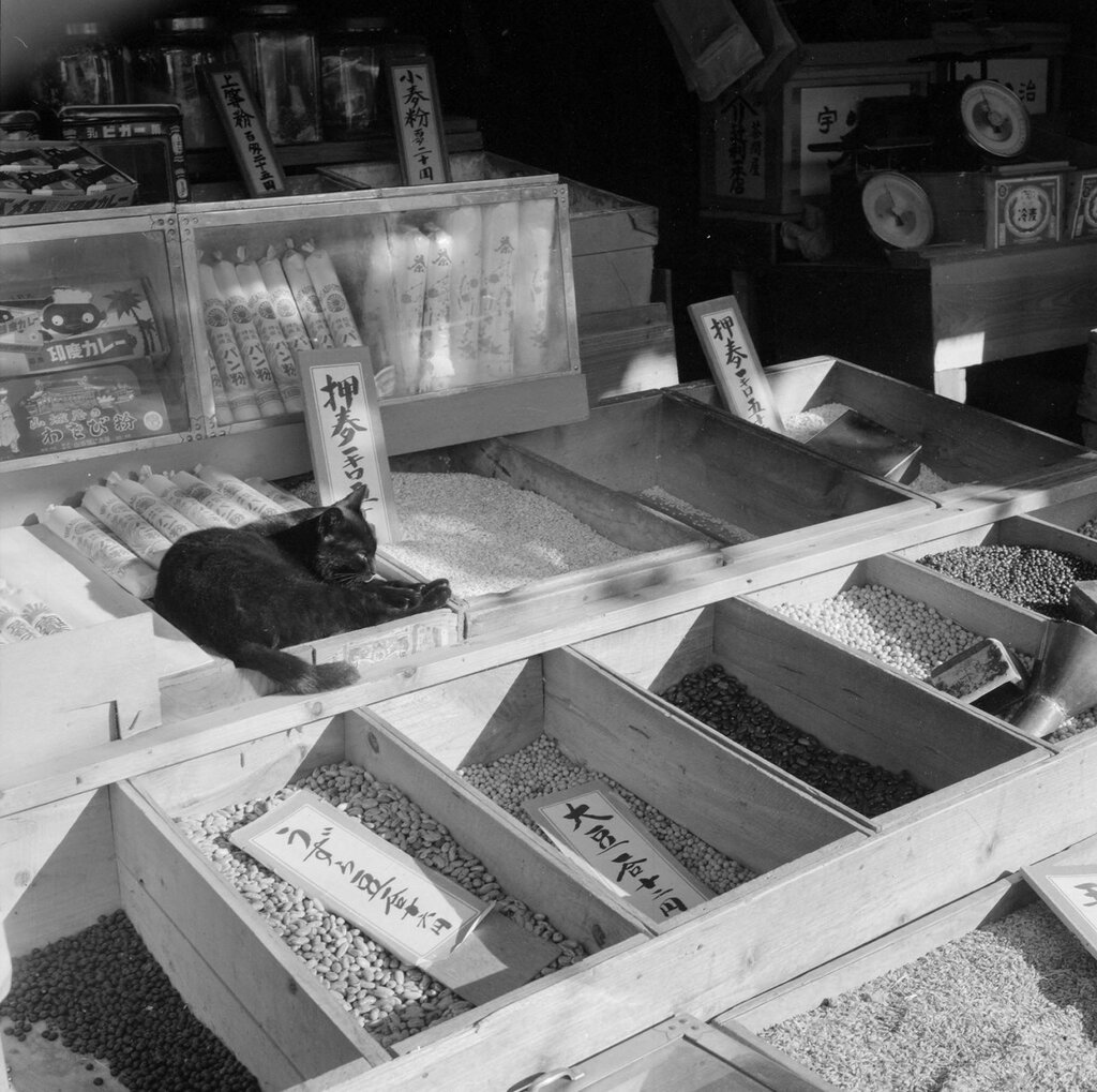 Japan, beans in small crates in shop in Kyoto. Not after 1965