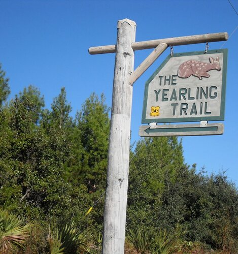 Yearling Trail