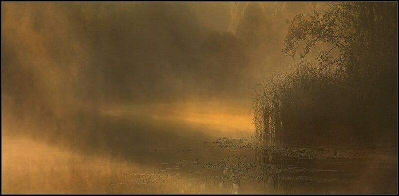 Туманное Утро на Ворскле
