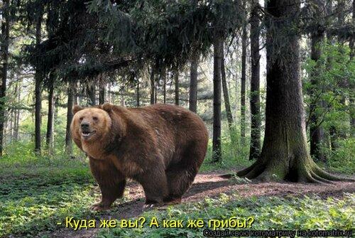 http://img-fotki.yandex.ru/get/4714/78082747.22/0_8db7c_f1af80b4_L.jpg