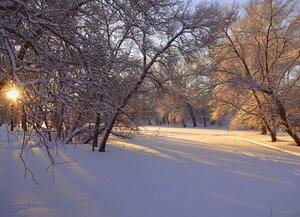 Снежная нежность... Нежная снежность... Тонкая нить серебра...