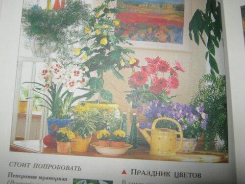 Записная книжка Натальи - Страница 5 0_1c2a99_4bef98dc_L