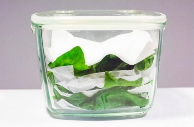 Салат или шпинат вконтейнере перекладываем бумажными полотенцами. Это поможет зелени вдва р