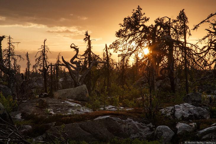 Большое карельское путешествие: гора Воттоваара (38 фото)