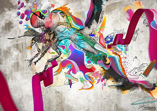 Brilliant Digital Collages by Archan Nair