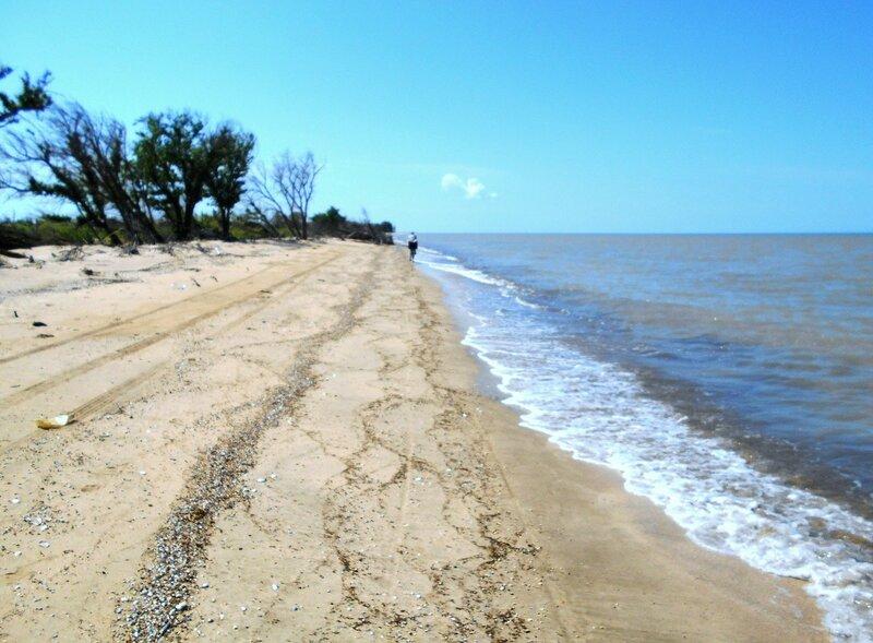 Азовское побережье, на Кубани... DSCN5721.JPG
