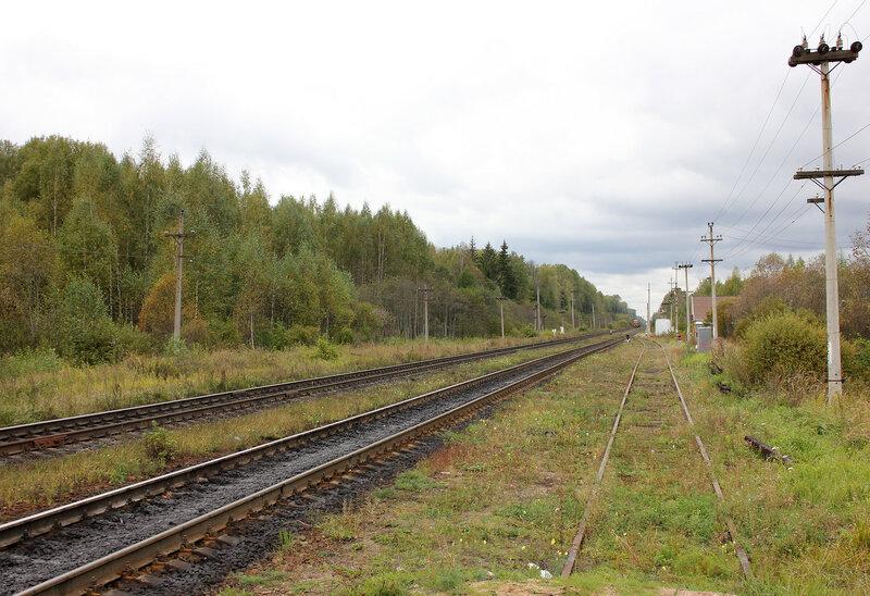 Станция Подсосенка, панорама, вид на Великие луки