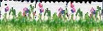 Herbe fleurie.png