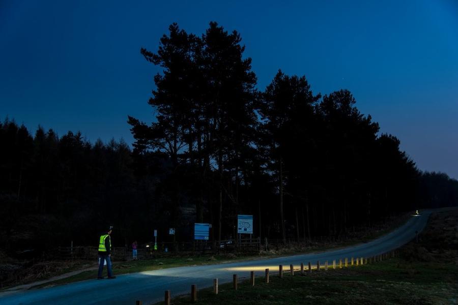 13. Категория «Документальная серия». «Жабы на дорогах». Национальный парк Болота Северного Йорка, С