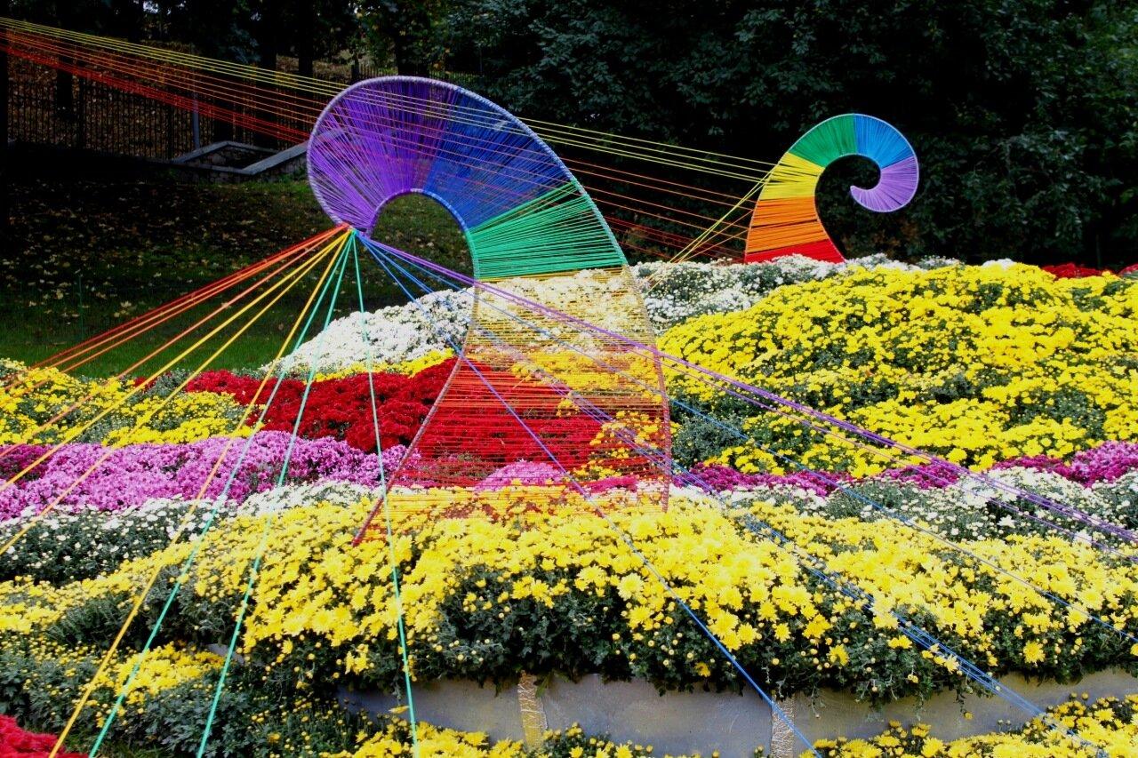 оломенский район на выставке цветов 2016 на Певческом поле