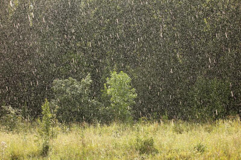 Дождь на перегоне Лужки-Орловские - Паньково. Средне