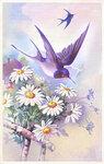 NLD Addon Vintage Card.jpg
