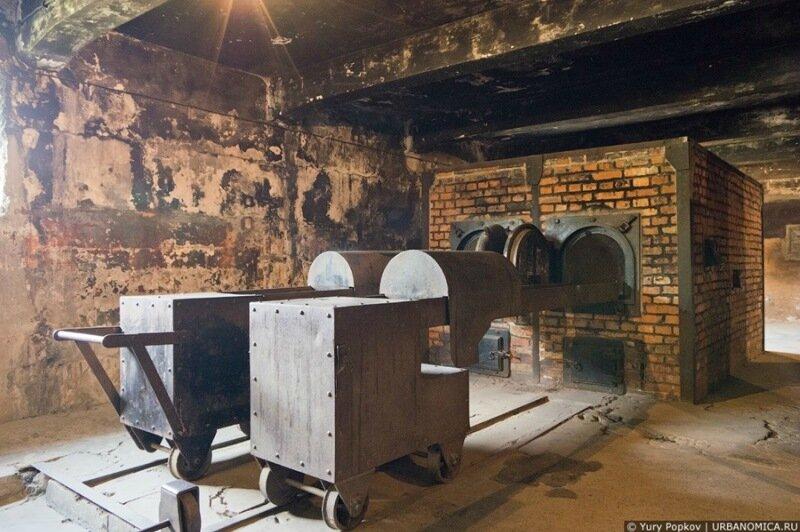Фотоэкскурсия. Концлагерь Освенцим / Аушвиц 0 105d06 62c70c71 XL