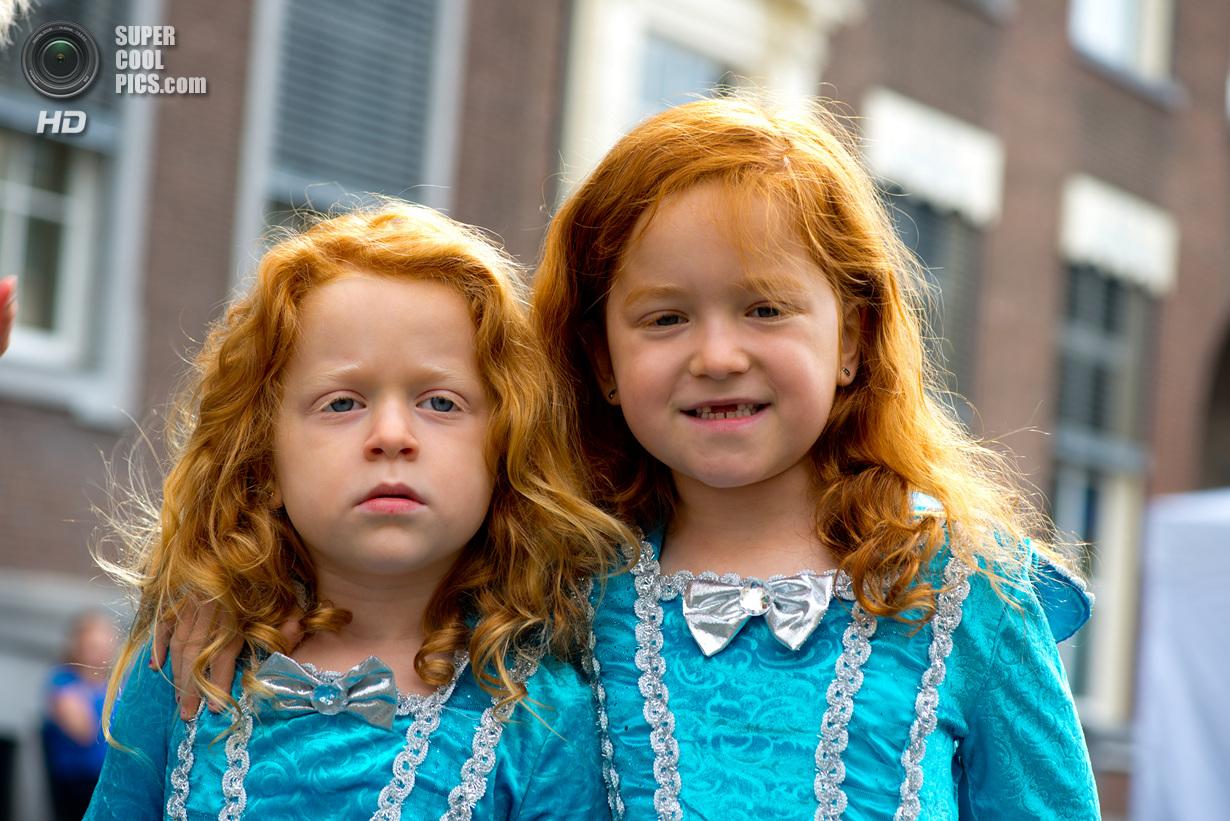 Рыжеволосые оккупировали Нидерланды (9 фото)