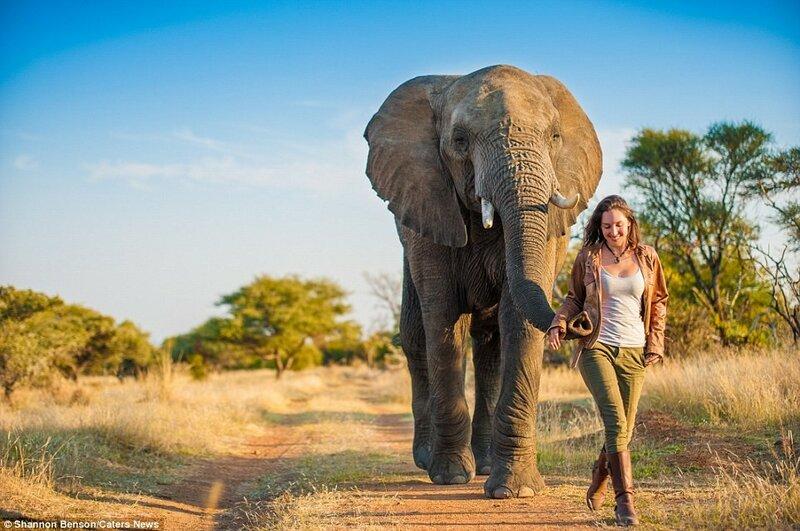 Шеннон призналась, что однажды ей пришлось убегать от слона.