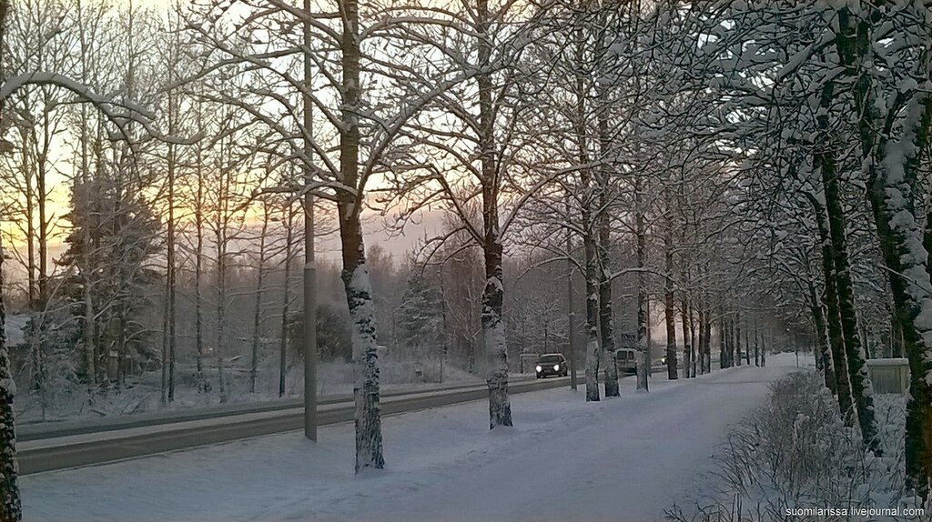Погода по вологодской области великий устюг