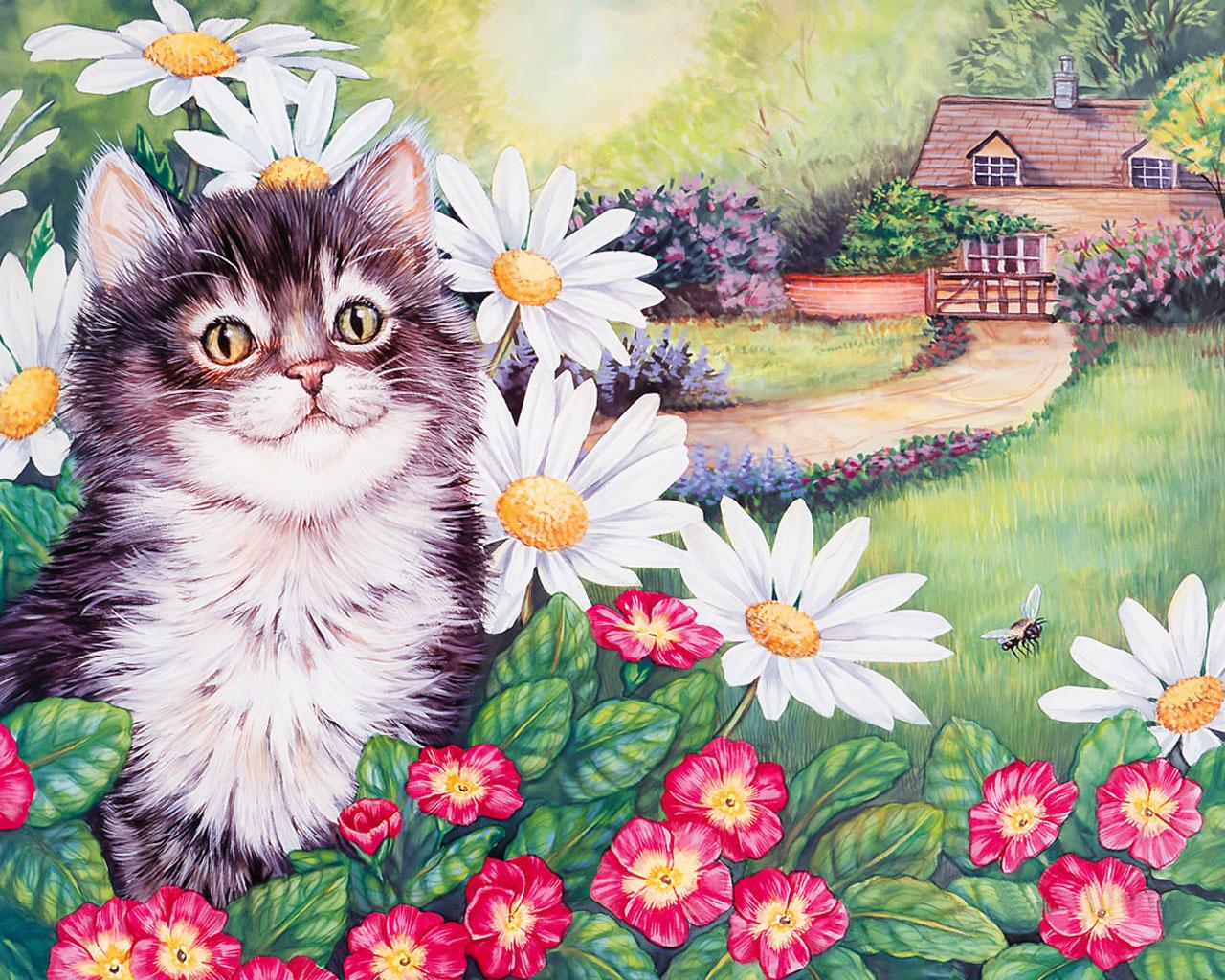 дом для кошек схема