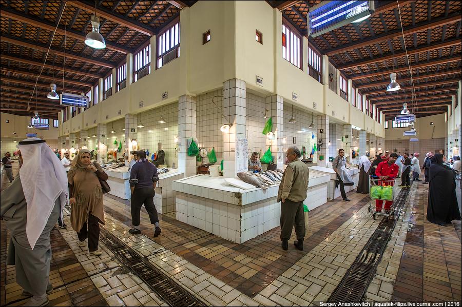 Kuwait Fishmarket / Mercado de pescado en Kuwait