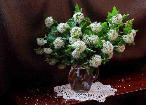букет с цветами спиреи