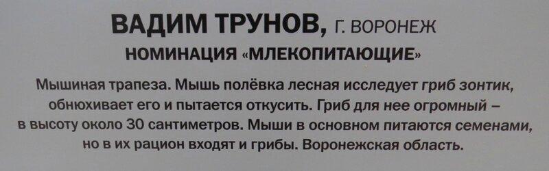 https://img-fotki.yandex.ru/get/475949/140132613.6a6/0_241089_902ef947_XL.jpg