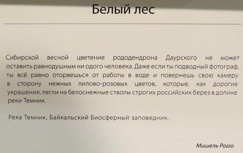 https://img-fotki.yandex.ru/get/475949/140132613.6c3/0_243f6d_f1fa6749_L.jpg