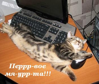 Картинка С первым марта! Кот получает удовольствие открытки фото рисунки картинки поздравления