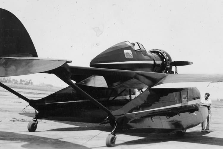 Rocheville Arctic Tern (1932)