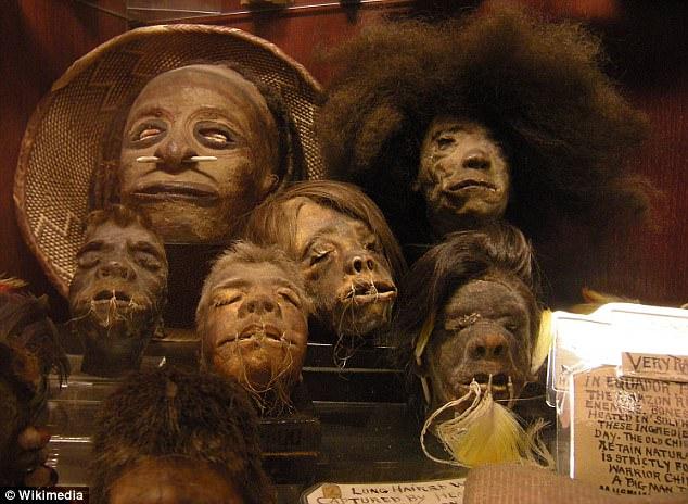 Сушеные головы пигмеев   По словам неназванных источников, Кейдж хранит коллекц