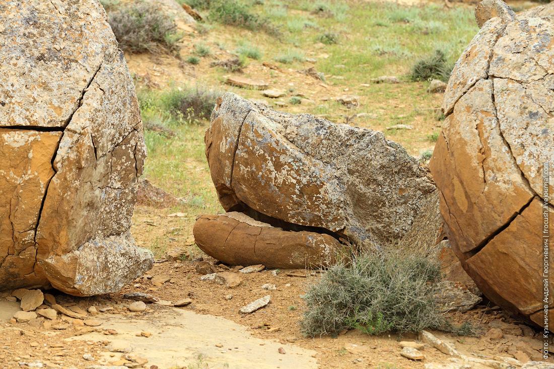 каменная конкреция Казахстан