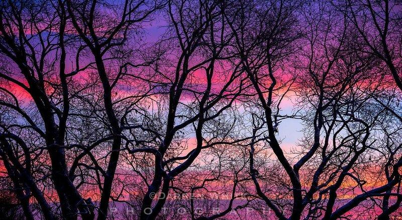 Пейзажный фотограф Даррен Уайт